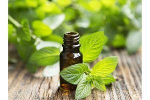En qué se diferencian los Perfumes y las colonias. 1